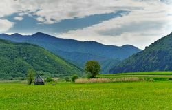 Valley Oltului Transilvania Romania Royalty Free Stock Photo