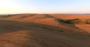 The valley Ovce pole in Macedonia. Wheat crop filmed from the air , filmed in 4K stock video footage