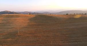 The valley Ovce pole, Macedonia. The valley Ovce pole -Macedonia. Wheat crop filmed from the air, 4K stock video