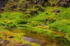 The valley in the Park Landmannalaugar stock photos