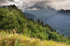 The valley of Passy (Chamonix, France). This image shows the valley of Passy, near Chamonix. In summer Stock Photo