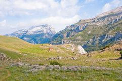 Valley at Pyrenees Royalty Free Stock Photos