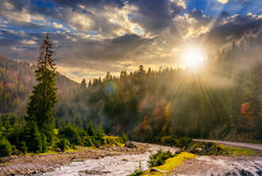Valley with river in foggy forest at sunset Royalty Free Stock Photography