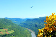 Valley with river. Green valley with river in the south Brazil Royalty Free Stock Images