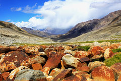 Valley with rock, stones, moss in Himalayas. Royalty Free Stock Image