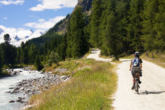 Valley Roseg. Cyclist on the road Rosegtal Switzerland Royalty Free Stock Photography