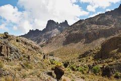Valley& x27; s av Mount Kenya Royaltyfri Bild