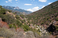 Valley at Sequoia National Park Stock Photo