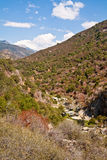 Valley at Sequoia National Park stock image