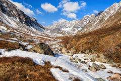 Valley of small brook in mountains of Eastern Siberia Stock Images