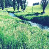 Valley stream Royalty Free Stock Images