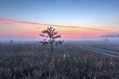 Valley of the Suhodrev river. Early morning in the valley of the river Suhodrev, Russia Stock Photography