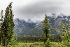 The valley by Sulphur Mountain Stock Image