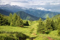 Valley in summer mountains Royalty Free Stock Photos