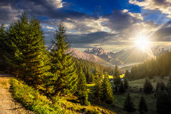 Valley between at sunset. Composite landscape. spruce forest on hillsides of mountain valley with high rocky peak in the far distance in evening light Stock Photography