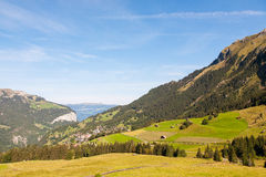 Valley in Swiss alps. Valley, Field in Swiss alps Royalty Free Stock Images
