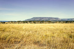 Valley in Tanzania Royalty Free Stock Photography