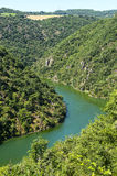 Valley of Tarn (Midi-Pyrenees). The valley of the Tarn river between Millau and Albi (Aveyron, Midi-Pyrenees, France) at summer Royalty Free Stock Photos
