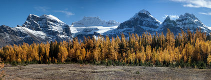Valley of the Ten Peaks. Huge panorama the Valley of the Ten Peaks, Alberta, Canada Stock Photography