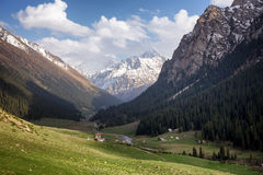 Valley in Tian Shan mountain, Kyrgyzstan Royalty Free Stock Photo