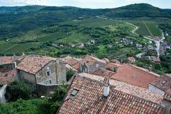 Valley truffles in croatia Royalty Free Stock Image