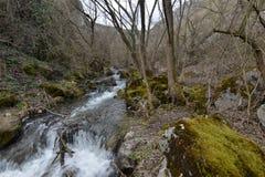 Through the valley of the Tureni gorge. Royalty Free Stock Photo
