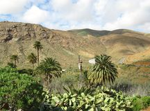 The valley of Vega de Rio Palmas on Fuerteventura Stock Image