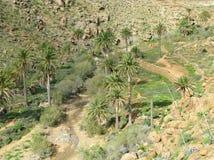 The valley of Vega de Rio Palmas on Fuerteventura Stock Photography