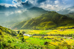 Valley Vietnam Royalty Free Stock Photography