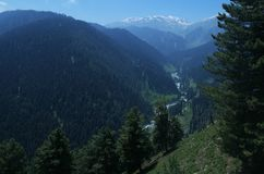 Valley view in Gulmarg. A beautiful valley view from top in Kashmir showing vast jungle and distant snow peaks Royalty Free Stock Image