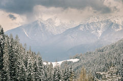 Valley view. View from the Olympic Ski resort of Axamer Lizum, Austria Royalty Free Stock Photos