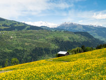 Valley View Surselva Stock Images
