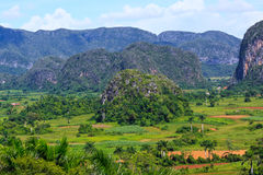 The Valley of Vinales in Cuba Royalty Free Stock Images
