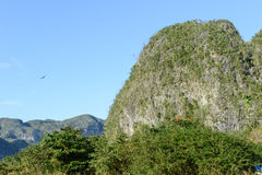 The valley of Vinales on Cuba Stock Images
