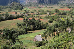 Valley of Vinales Landscape Royalty Free Stock Photography