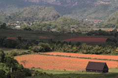 Valley of Vinales Landscape Stock Images