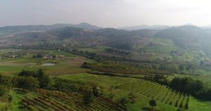 Valley with vineyards, Vineyards, a suggestive aerial video over a vineyards in an amazing tuscan landscape, panorama. Valley with vineyards, a suggestive aerial stock video footage