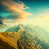 Valley_vintage прикарпатской горы Стоковое фото RF