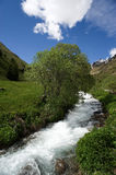 Valley  of Viso. Valley of Viso (Bs), Valcamonica, Lombardy,Italy,the torrent Frigidolfo Royalty Free Stock Photography