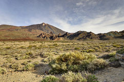 Valley of volcano Teide Stock Image