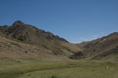Valley of the Vultures in Gobi Desert Royalty Free Stock Images