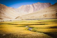 Valley a the way to Pangong lake Stock Images