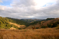 Valley in Western New Zealand Stock Images