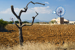 Valley of windmills, Mallorca Royalty Free Stock Image