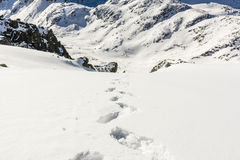 Valley in winter conditions in Tatra Stock Photography