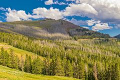 Wyoming Valley in Yellowstone National Park with Shade covered mountaintop. Valley in Yellowstone National Park in Wyoming with blue sky and white clouds with stock image
