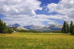 Valley in Yosemite Royalty Free Stock Photo