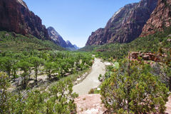 Valley in the Zion Canyon National Park, Utah Royalty Free Stock Photo