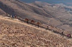 Vallfärdar att stiga ned från den Sinai monteringen, Egypten Arkivfoto