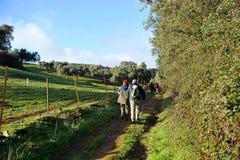 Vallfärdar på vägen till Santiago, Tentudia, via de la Plata, landskap av Badajoz, Spanien Royaltyfri Foto